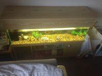 4 foot fish tank.