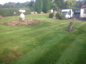 Evergreen garden services, gardener, gardening, garden clearances maintenance, fencing etc etc...