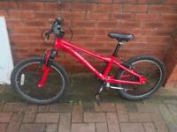 Kids Gary Fisher bike