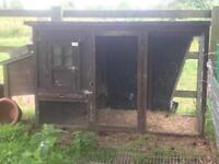 Chicken coop/rabbit hutch