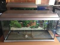 Elite 80L Aquarium Fish Tank with filter and heater