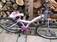 "Girls pink kinx Apollo bike 13"" frame"