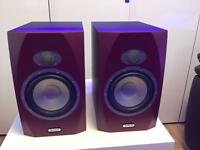 Tannoy reveal 6p monitor speakers