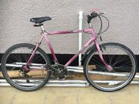 Raleigh Mustand