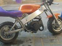 Mini Pocket bike 50cc Motorbike MiniMoto Mini Dirt Bike