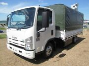 Isuzu NPR200 Tray truck with canopy Curtainsider Glanmire Gympie Area Preview