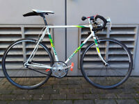 Mens Single Speed Road Racing Bike Vintage Puch Bicycle Specialised Axis Gatorskin Tyres