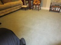 Carpet for sale. Good as new 23ft by 11 ft £95