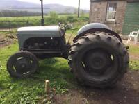 Grey Ferguson Fergie Diesel Tractor