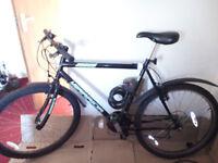 Black Mountain Bike, medium size, incl. lock!