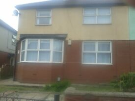 Spacious 3/4-bedroom semi with conservatory and garden, Ely, Cardiff