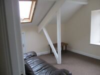 1 Bed 4th Floor Attic Flat - Haverfordwest