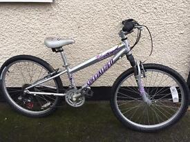 Girls Specialized Hotrock 24 bike, age 7-11