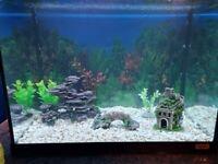 Fish Tank Fluval 90 Ltr LED full set up