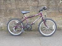 """Kids Bike - 20"""" Wheels (Suit Age 8-10 approx) - 5-speed Shimano Gears (Grip Shift)"""