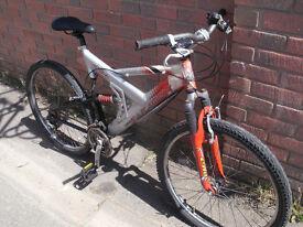 Saracen Raw Mountain Bike
