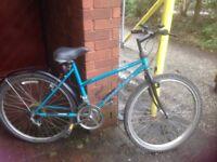 Bicycles x 2