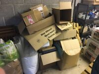 Twenty plus cardboard boxes (various large sizes) in good condition, packing material also available