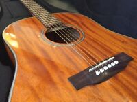 Tanglewood TW40 SDD acoustic guitar Plus gig case