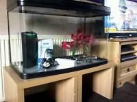 Aquarium 120 litre