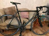Viking roubaix full carbon road bike