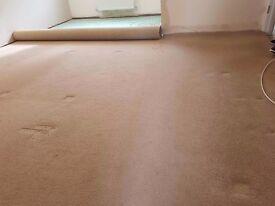Carpet with underlay