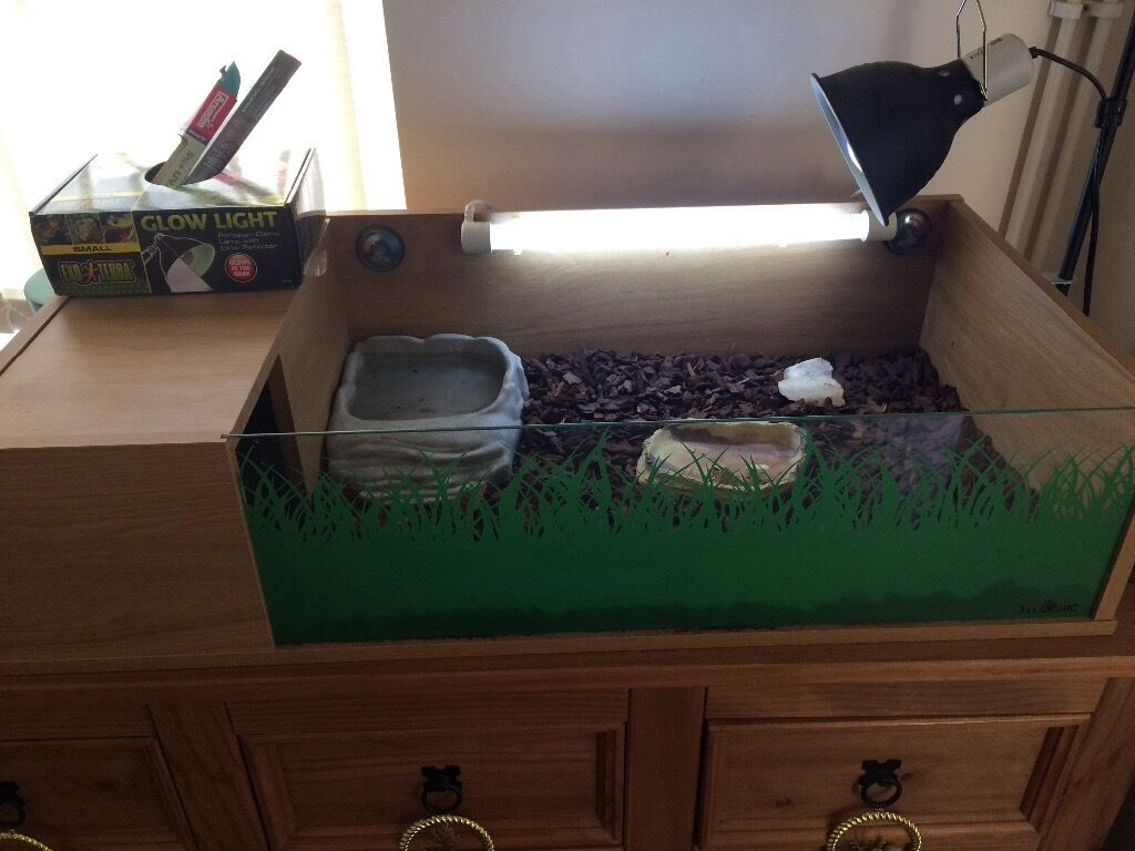 Tortoise table inc uv light and heat lamp | in Totton, Hampshire ...