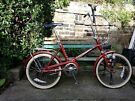 Shopper Record FULLY SERVICED 3 speeds Sturmey Archer
