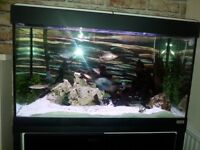 fluval fish tank with external filter and all you can see in photo