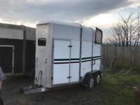Ivor Williams 505 horse trailer