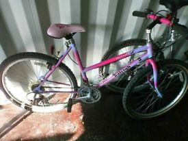 Raleigh Montery ladies mountain bike good for town and country *20