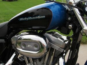 2004 harley-davidson XL883C Custom   Stage 1 Exhaust and Progres London Ontario image 8