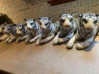White tigers available - new