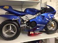MINI MOTO TRI-MOTO 49CC PETROL BIKE LAST FEW LEFT NOW £350 TO CLEAN AT KICKSTART BELFAST