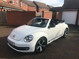 VW Beetle Convertible WHITE