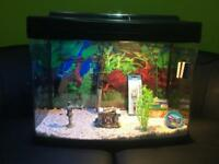Fish Tank. Heater. Light. Filter. Tropical or Cold water fish