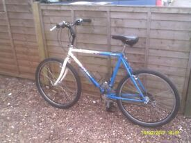 SPECIALIZED ROCKHOPPER HARDTAIL MTB ONE OF MANY QUALITY BICYCLES FOR SALE