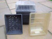 Seed trays.