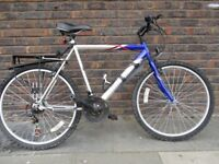 Large Mens Mountain bike