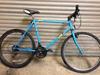 LARGE RALEIGH BIKE - FREE DELIVERY TO OXFORD!