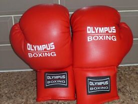 Sparring Boxing Gloves & Pads