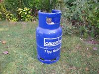 Calor gas bottle (empty)