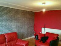 Cleaner Painter, wallpaper hanging/stripping, decorator