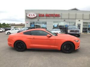 2016 Ford Mustang V6 *PRICED TO SELL*