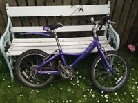 "Children's purple 20"" GIANT bike"
