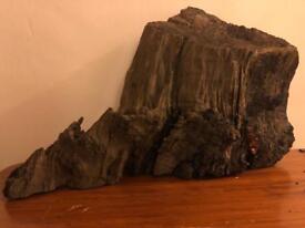 Large piece bogwood