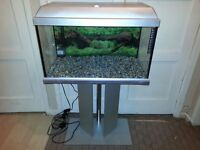 ELITE 60L FISH TANK SETUP AND STAND (sell or swap)