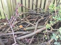 Free logs wood branches and twigs