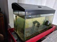 Fish tank FREE, approx 50l, 30x60x30cm