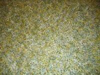 modern green rug long pile
